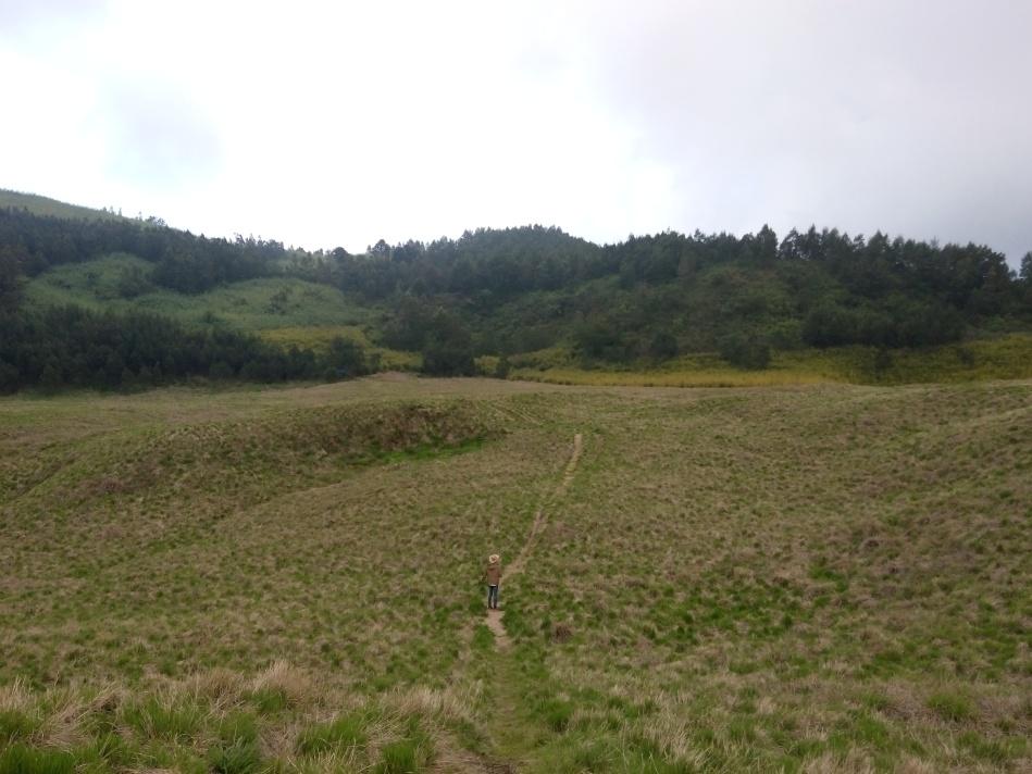 Padang savanna dari bukit Pangonan