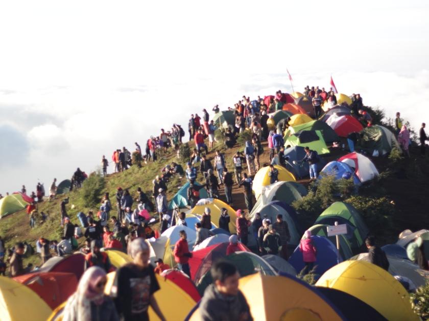 Ramainya puncak gunung Prau saat libur panjang hari raya Natal 2015